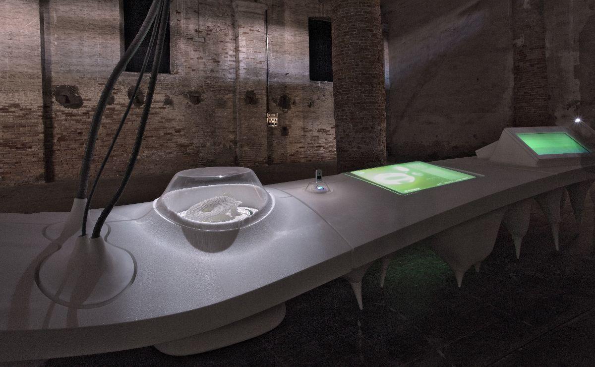 R+Sie (n) Venice Biennale 2010